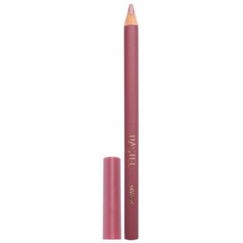 DIVAGE карандаш д/губ  Pastel  №2204  бургунд